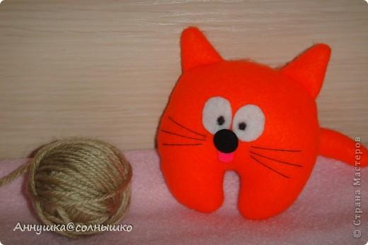 рыжий котик фото 2