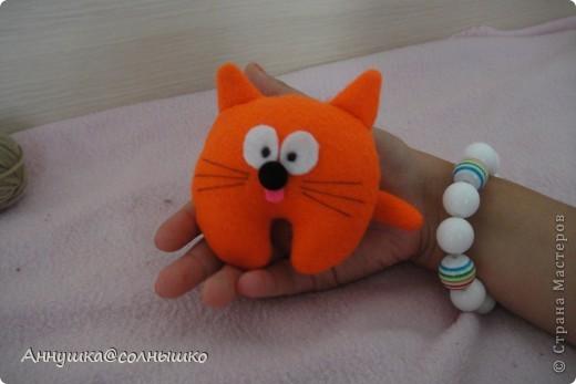 рыжий котик фото 1