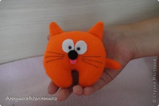 рыжий котик фото 3