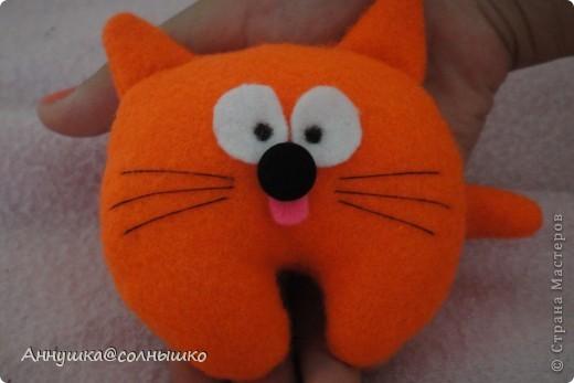рыжий котик фото 4