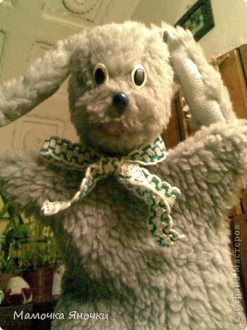 Заяц на руку фото 1