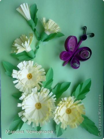 Хризантемы. Первые работы фото 4