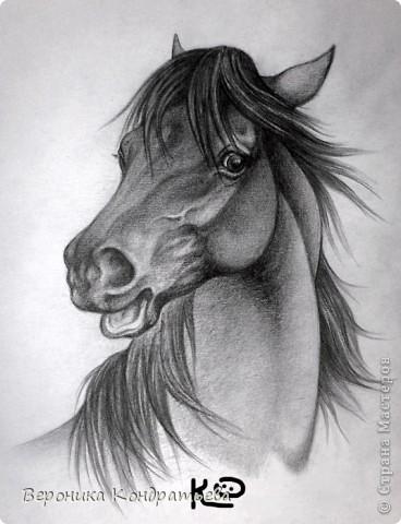 Давайте попробуем нарисовать эту лошадку? фото 1