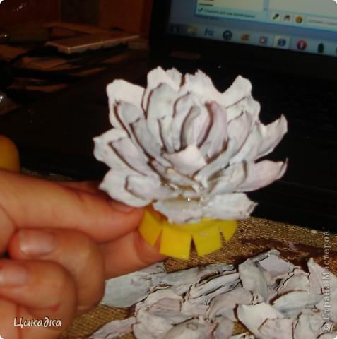 ну вот, дорогие мастерицы, начинаю исполнять обещанное. будем ваять цветок из еловых чешуек. георгин, он же кувшинка (если не красить в яркие цвета). начинаем.  снова оговариваюсь, что из-за браузера гружу по одному фото, поэтому заранее извиняюсь перед всеми, кого заставлю ждать... фото 7