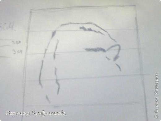 Берем лист бумаги и начинаем творить! рИСУЕМ ПРЯМОУГОЛЬНИК РАЗМЕРОМ  20х13см. Этот прямоугольник располосываем на полоски которые показаны на рисунке. Расстояние через каждые полоски- 3 см. (Извините за качество, дальше будет лучше.) начинаем рисовать спину. И бок. фото 4