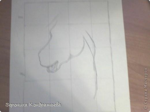 Давайте попробуем нарисовать эту лошадку? фото 4