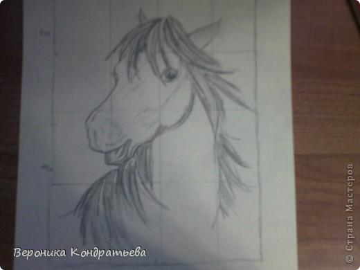 Давайте попробуем нарисовать эту лошадку? фото 8