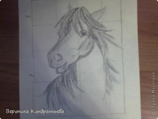 Давайте попробуем нарисовать эту лошадку? фото 9
