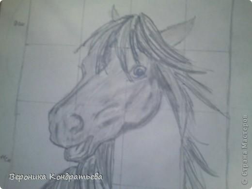 Давайте попробуем нарисовать эту лошадку? фото 10