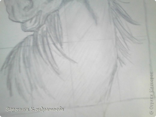 Давайте попробуем нарисовать эту лошадку? фото 11