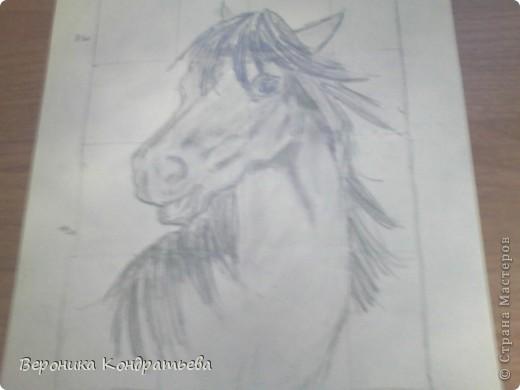 Давайте попробуем нарисовать эту лошадку? фото 12