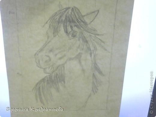 Давайте попробуем нарисовать эту лошадку? фото 13