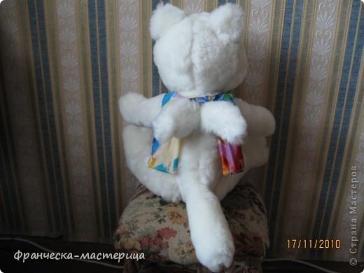 Доброго дня всем жителям СМ! Продолжаем знакомство с игрушками, сшитыми вручную.Представляю вам Ангельского кота ( или кошачьего ангела)! Рост игрушки 60 см., сшит из искуственного меха,глазки , носик, ротик-вышиты. фото 3