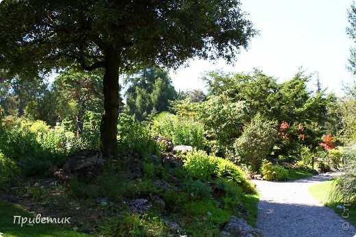 Вход в Ботанический сад Женевы фото 2