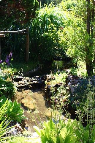 Вход в Ботанический сад Женевы фото 3