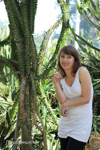 Вход в Ботанический сад Женевы фото 14