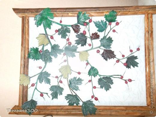 Веточки настоящие, ягоды из холодного фарфора. фото 1