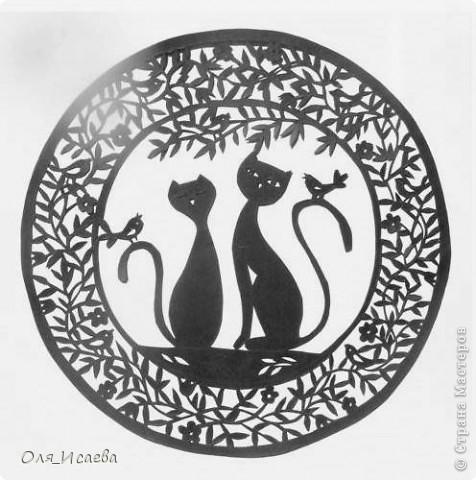 Кошечки фото 1