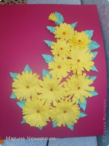 Хризантемы. Первые работы фото 5