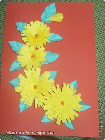 Хризантемы. Первые работы фото 6