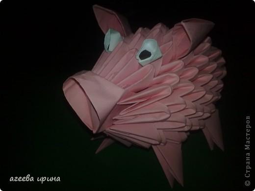 розовая хрюшка фото 2