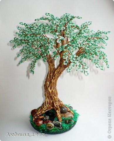 Дерево фото 2