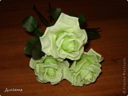 слепились у меня такие зеленые розы,очень их люблю,но меня терзают смутные сомнения,может их подразукрасить немного,только какой цвет использовать - не знаю,думала может беленьким слегка пройтись. Или вовсе их не трогать,чтоб не испортить??? фото 6