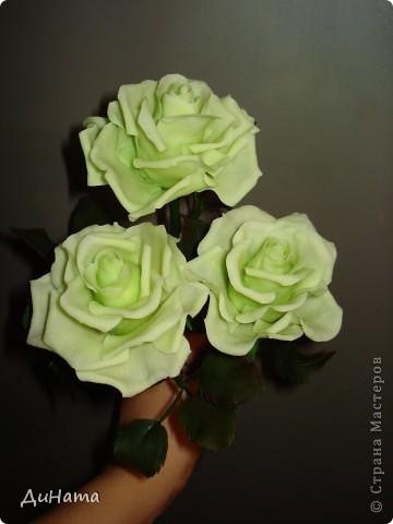 слепились у меня такие зеленые розы,очень их люблю,но меня терзают смутные сомнения,может их подразукрасить немного,только какой цвет использовать - не знаю,думала может беленьким слегка пройтись. Или вовсе их не трогать,чтоб не испортить??? фото 5
