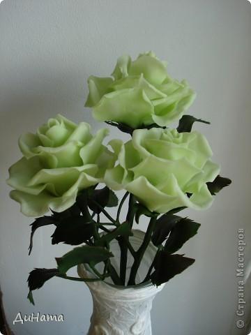 слепились у меня такие зеленые розы,очень их люблю,но меня терзают смутные сомнения,может их подразукрасить немного,только какой цвет использовать - не знаю,думала может беленьким слегка пройтись. Или вовсе их не трогать,чтоб не испортить??? фото 2