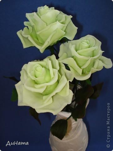 слепились у меня такие зеленые розы,очень их люблю,но меня терзают смутные сомнения,может их подразукрасить немного,только какой цвет использовать - не знаю,думала может беленьким слегка пройтись. Или вовсе их не трогать,чтоб не испортить??? фото 1
