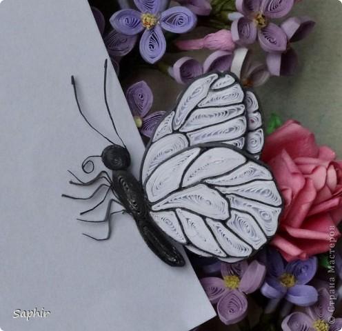 Из сделанных ранее веточек сирени собрался такой букетик. Добавила для цвета розочки: http://asti-n.ya.ru/posts.xml?tag=2023576 , а тут и бабочки прилетели. Формат работы А3.Фон - пастель. Рамочка пока временная. фото 13