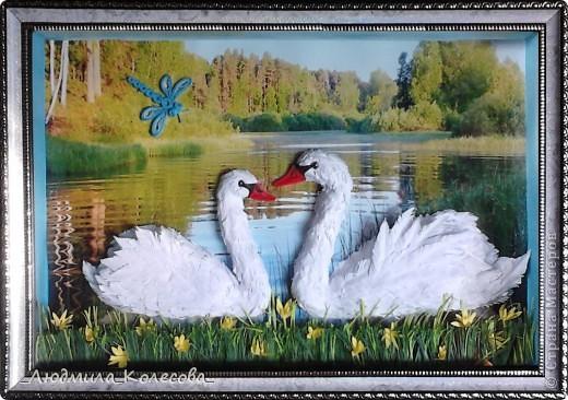 Этих лебедей я сделала ко дню рождения своей доченьки (по зороастрийскому гороскопу она родилась в год Лебедя). Для фона специально подобрала и распечатала фотографию - очень хотелось чтобы лебеди плавали по озеру. Надеюсь идея удалась. фото 1