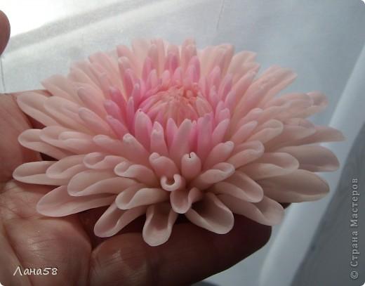 букет из хризантем фото 7