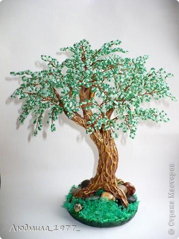 Дерево фото 1