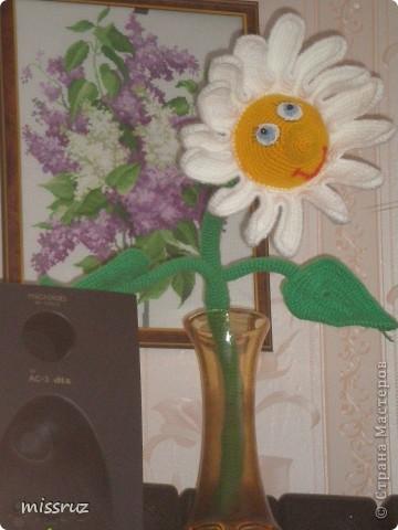Ромашка, по он-лайну Марины Борисовой фото 1