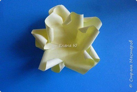 Розы из бумаги на скорую руку фото 11
