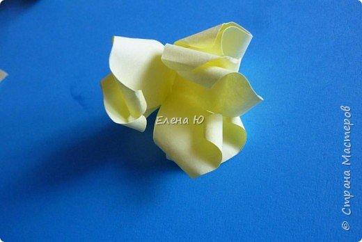 Розы из бумаги на скорую руку фото 15