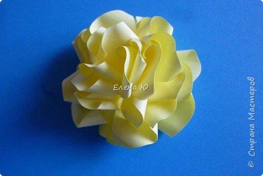 Розы из бумаги на скорую руку фото 16
