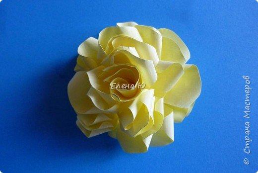 Розы из бумаги на скорую руку фото 20