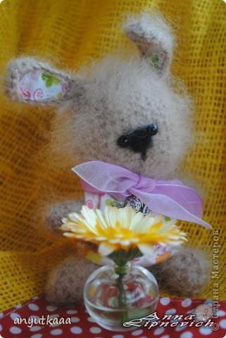 Зайчишка Люси фото 2