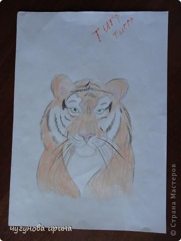 Мои рисунки. фото 10