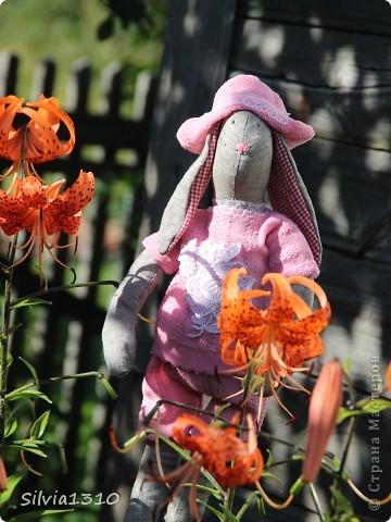 Тильдо-кроль сажает огурцы ))) фото 2