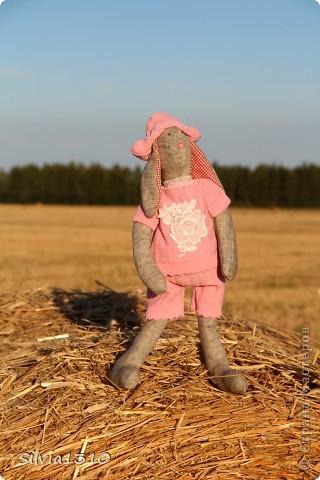 Тильдо-кроль сажает огурцы ))) фото 5
