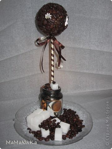 Рада приветствовать Вас! Сегодня кофейный  топиарий. Сделала на  день рождения свекрови. Она очень любит кофе!!!  Надеюсь, что оно будет бодрить по утрам и радовать по вечерам. фото 1