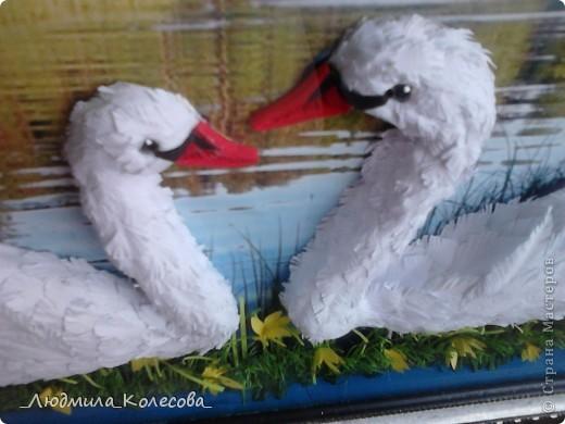 Этих лебедей я сделала ко дню рождения своей доченьки (по зороастрийскому гороскопу она родилась в год Лебедя). Для фона специально подобрала и распечатала фотографию - очень хотелось чтобы лебеди плавали по озеру. Надеюсь идея удалась. фото 3