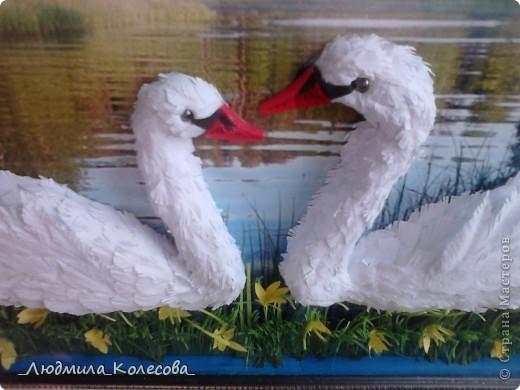Этих лебедей я сделала ко дню рождения своей доченьки (по зороастрийскому гороскопу она родилась в год Лебедя). Для фона специально подобрала и распечатала фотографию - очень хотелось чтобы лебеди плавали по озеру. Надеюсь идея удалась. фото 6