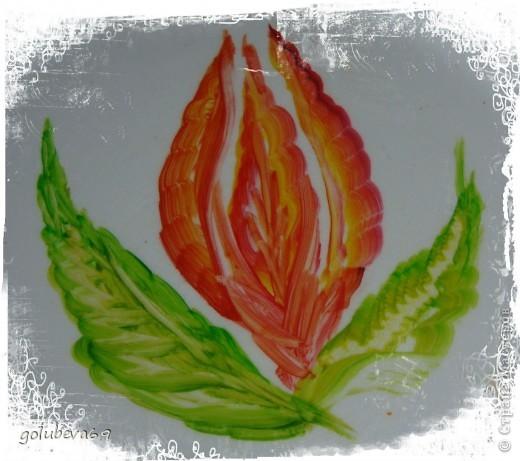 Новый цветочек. фото 2