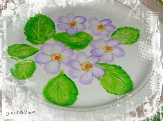 Новый цветочек. фото 5