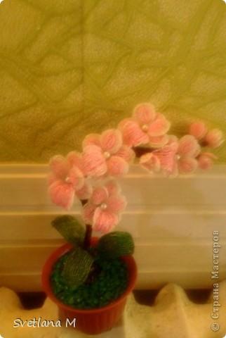 """Добрый вечер ,уважаемые жители С.М.!!!Хочу Вам представить орхидею, сделанна она совместно с моей ученицей, Светланой!!!Приготовили  ее на выставку к дню города!!!Родилась очень быстро, а вот собиралась не очень быстро !!!Не могла придумать долго название и решила,что назову ее """" Розовый Гламур"""". фото 4"""