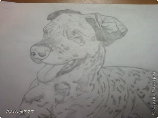 Очень люблю рисовать  простым карандашом фото 3